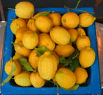 A picture named limonip.jpg